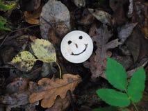 Seta sonriente Fotos de archivo libres de regalías