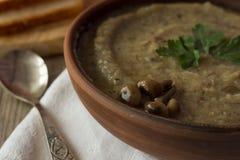 Seta y sopa poner crema de las patatas en cuenco Imagen de archivo libre de regalías