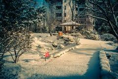 Setagaya parkerar Wien Fotografering för Bildbyråer
