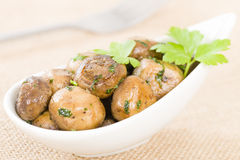 Setas al Ajillo. Sauteed mushrooms with garlic, lime and parsley. Traditional Spanish tapas dish Royalty Free Stock Images