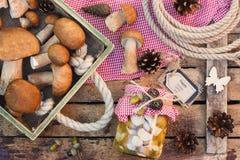 Setas blancas conservadas, setas blancas crudas y conos del pino Foto de archivo libre de regalías