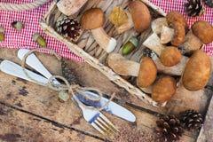 Setas blancas crudas, conos del pino con las decoraciones secas en la tabla de madera Fotografía de archivo libre de regalías