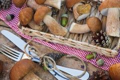 Setas blancas crudas, conos del pino con las decoraciones secas y cubiertos Imagen de archivo