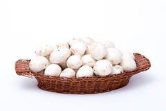 Setas blancas en una cesta aislada en blanco Fotografía de archivo