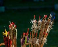 Setas coloridas do close up para o tiro ao arco Foto de Stock