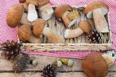 Setas, conos del pino con las decoraciones secas en la tabla de madera Foto de archivo libre de regalías