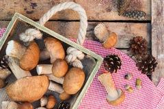 Setas, conos del pino con las decoraciones secas en la tabla de madera Imagen de archivo libre de regalías
