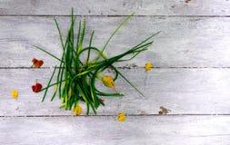 Setas cruas verdes do alho em uma tabela velha Imagens de Stock Royalty Free
