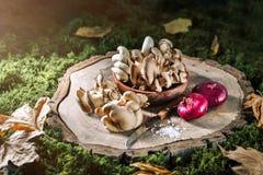 Setas crudas en tocón y las hojas de otoño Aún-vida del otoño Foco selectivo Fondo del otoño Fotografía de archivo libre de regalías