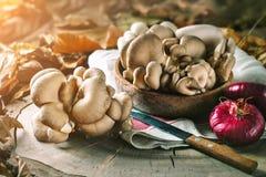 Setas crudas en tocón y las hojas de otoño Aún-vida del otoño Foco selectivo Fondo del otoño Foto de archivo