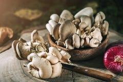 Setas crudas en tocón y las hojas de otoño Aún-vida del otoño Foco selectivo Fondo del otoño Imagen de archivo libre de regalías