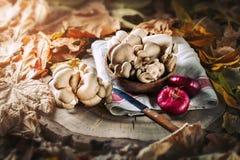Setas crudas en tocón y las hojas de otoño Aún-vida del otoño Foco selectivo Fondo del otoño Imágenes de archivo libres de regalías