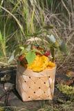 Setas del bosque en cesta Fotos de archivo libres de regalías