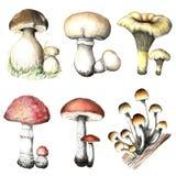 Setas del lápiz Imagen de archivo libre de regalías