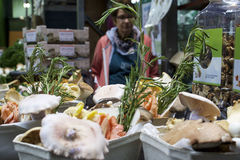 Setas del mercado Imagen de archivo libre de regalías