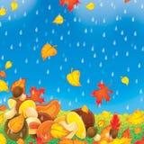 Setas en la lluvia libre illustration