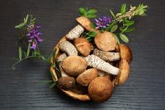 Setas Ingredientes del alimento biológico Foto de archivo libre de regalías