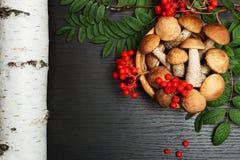 Setas Ingredientes del alimento biológico Fotografía de archivo libre de regalías