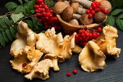 Setas Ingredientes del alimento biológico Imagen de archivo libre de regalías