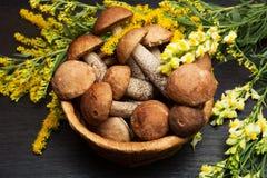 Setas Ingredientes del alimento biológico Fotos de archivo