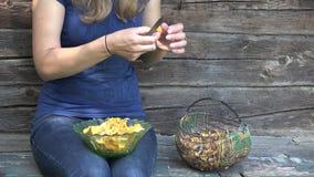 Setas limpias del mízcalo de las manos de la mujer del granjero en granja 4K metrajes