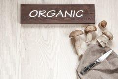 Setas orgánicas Fotografía de archivo
