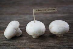 Setas orgánicas frescas del champiñón en el fondo de madera Fotos de archivo libres de regalías