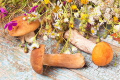 Setas y flores salvajes en la tabla Imagenes de archivo