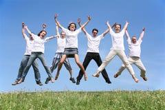 Sete amigos Foto de Stock Royalty Free