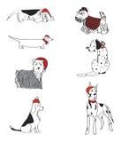 Sete cães vestiram-se para o grupo do vetor do Natal foto de stock royalty free