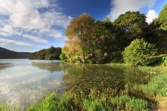 Sete Cidades laguna w Azores Fotografia Stock