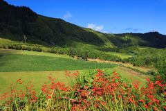 Sete Cidades landscape. In Sao Miguel island, Azores, Europe Stock Image