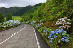 Sete Cidades landscape. Sao Miguel Island, Azores, Europe Royalty Free Stock Photo