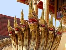 Sete dirigiram o dragão Foto de Stock Royalty Free