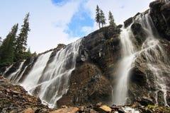Sete encobrem quedas, lago O'Hara, Yoho National Park, Canadá foto de stock royalty free