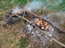Sete espetos com carne encontram-se em logs sobre carvões vegetais entre a grama verde fotografia de stock royalty free