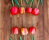 Sete tulipas em um fundo de madeira natural Fotografia de Stock Royalty Free