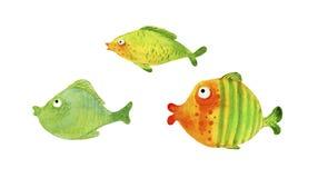 Seth bright, green aquarium, marine fish