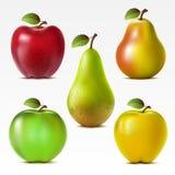 Setof fruits royalty free illustration