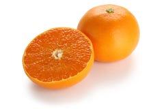 Setoka arancione, agrumi giapponesi di alta qualità Fotografia Stock