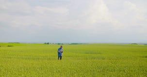Setor agrícola responsável pela análise do setor agrícola video estoque