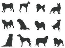 Sets av silhouettehundar, skapar vid vektorn stock illustrationer