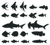 Sets of silhouette Fishes 1 Royalty Free Stock Image
