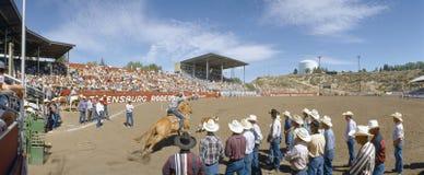 settantacinquesimo Rodeo di Ellensburg Fotografia Stock Libera da Diritti