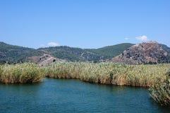 Sette laghi nelle canne Fotografia Stock Libera da Diritti