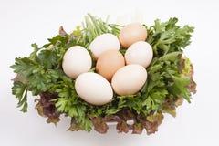 Sette uova immagine stock libera da diritti