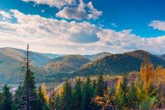 Settembre dorato nelle montagne Fotografie Stock Libere da Diritti