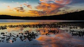 1° settembre 2016, lago Skilak, tramonto spettacolare Alaska, la catena montuosa aleutina - elevazione 10.197 piedi immagine stock