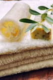 Setting with natural olive soap stock image