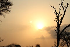 The setting of the sun on Africa Royalty Free Stock Photos